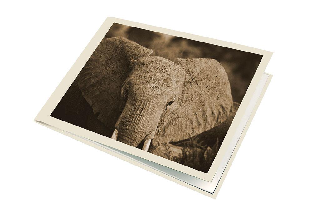 Transfer-elefant innbinding X-Book http://www.unibind.no